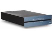 BlueSound B100S